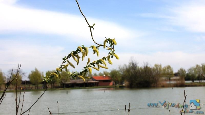 87_debeljacka-jezera-16