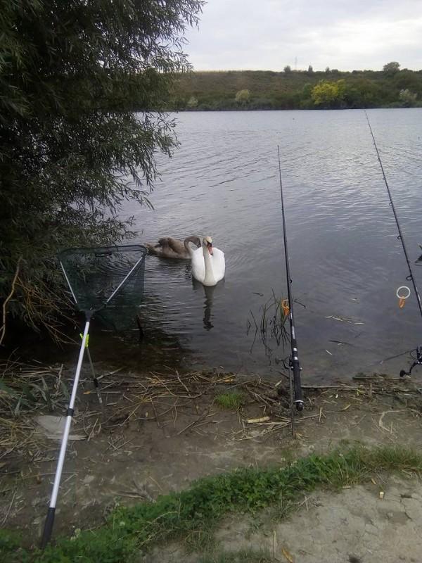 Šatrinačko-jezero-2