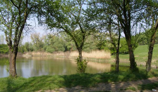 Cencanska-Jezera_5-1