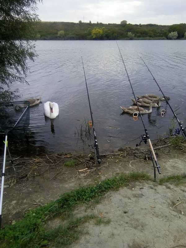 Šatrinačko-jezero-1