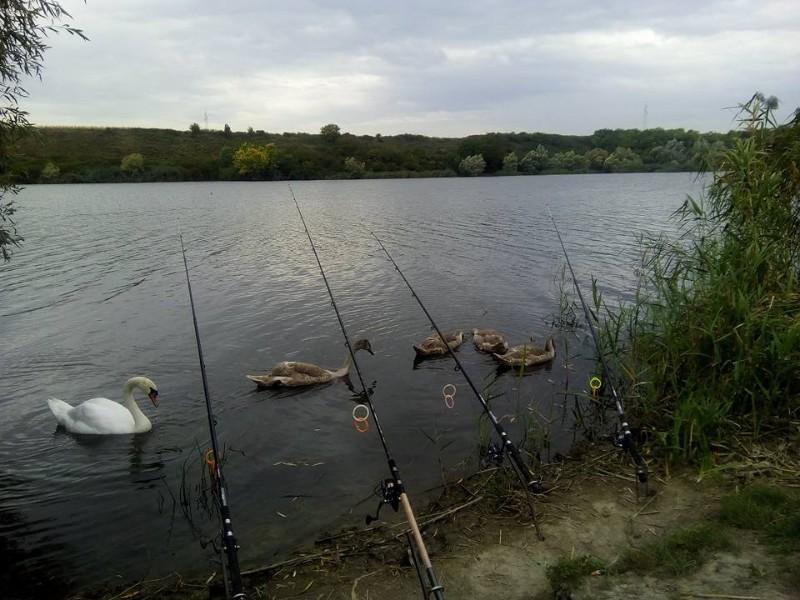 Šatrinačko-jezero-3