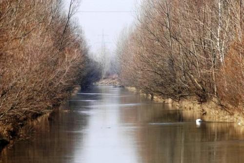 trout-kanal2