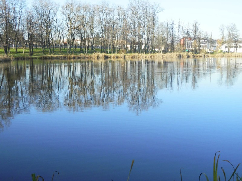 jezero-bubanj4