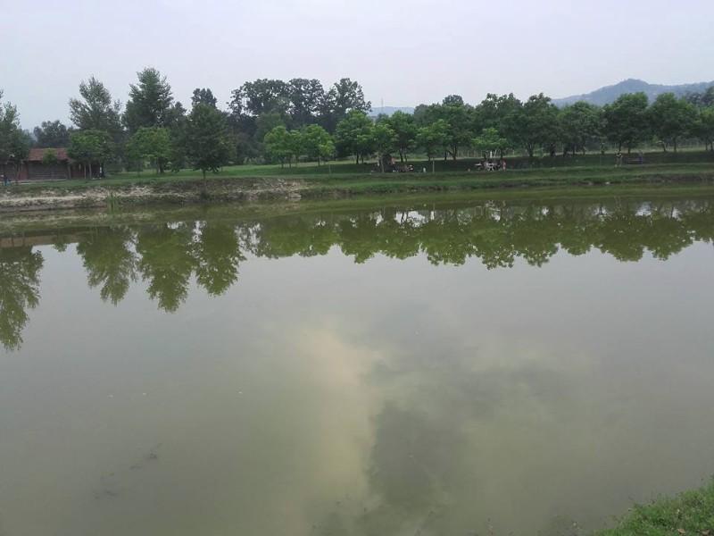 jezero-mrkotic2